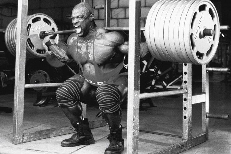 squat 600 best squat accessory exercises