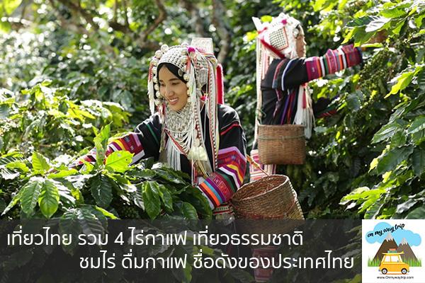 เที่ยวไทย รวม 4 ไร่กาแฟ เที่ยวธรรมชาติ ชมไร่ ดื่มกาแฟ ชื่อดังของประเทศไทย เที่ยวไหนดี จองตั๋วเครื่องบินราคาถูก คาเฟ่น่านั่ง เที่ยวต่างประเทศ 5ที่เที่ยว backpackแบ็คแพค