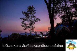 ไปรับลมหนาว สัมผัสธรรมชาติบนดอยในไทย เที่ยวไหนดี จองตั๋วเครื่องบินราคาถูก คาเฟ่น่านั่ง เที่ยวต่างประเทศ 5ที่เที่ยว backpackแบ็คแพค