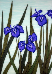 Three Iris SOLD