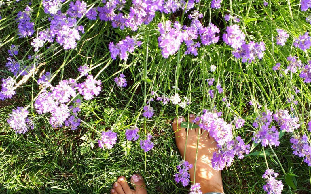 Wellness Redone - Barefoot Earthing