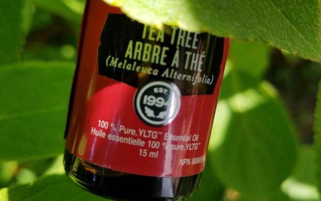 3 reasons you need Tea Tree Oil