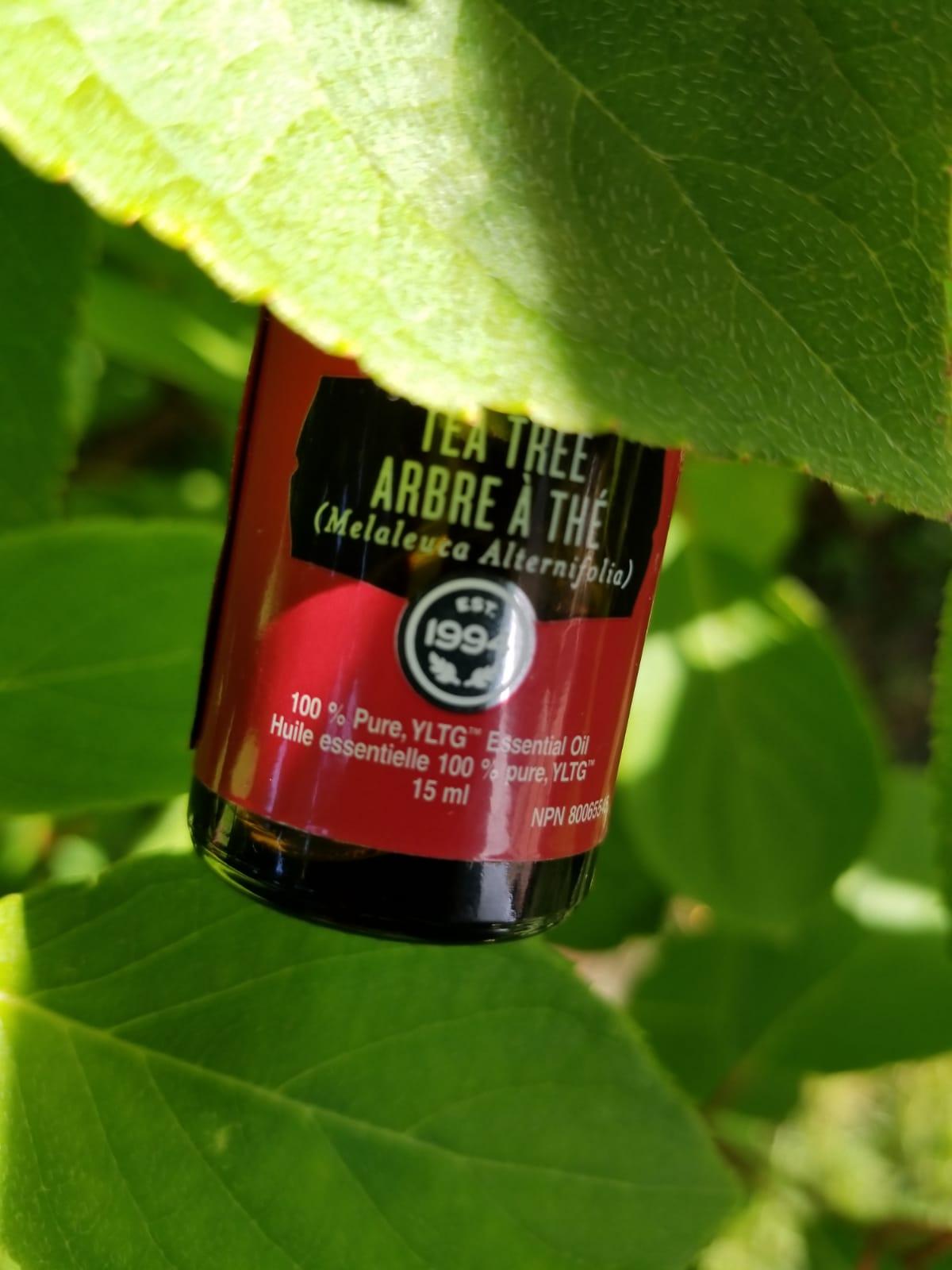 3 reasons you need Tea Tree Oil…