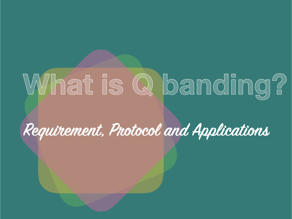 What is Q banding?- Requirement, Protocol and Applications