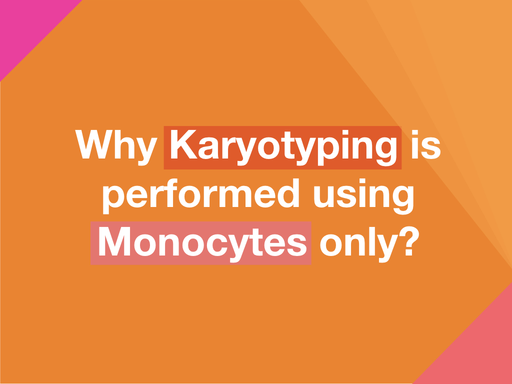 Why Karyotyping is performed using Monocytes only?