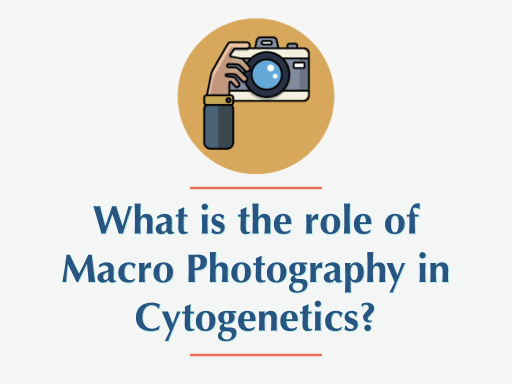 what is the role of macro photography in karyotyping?