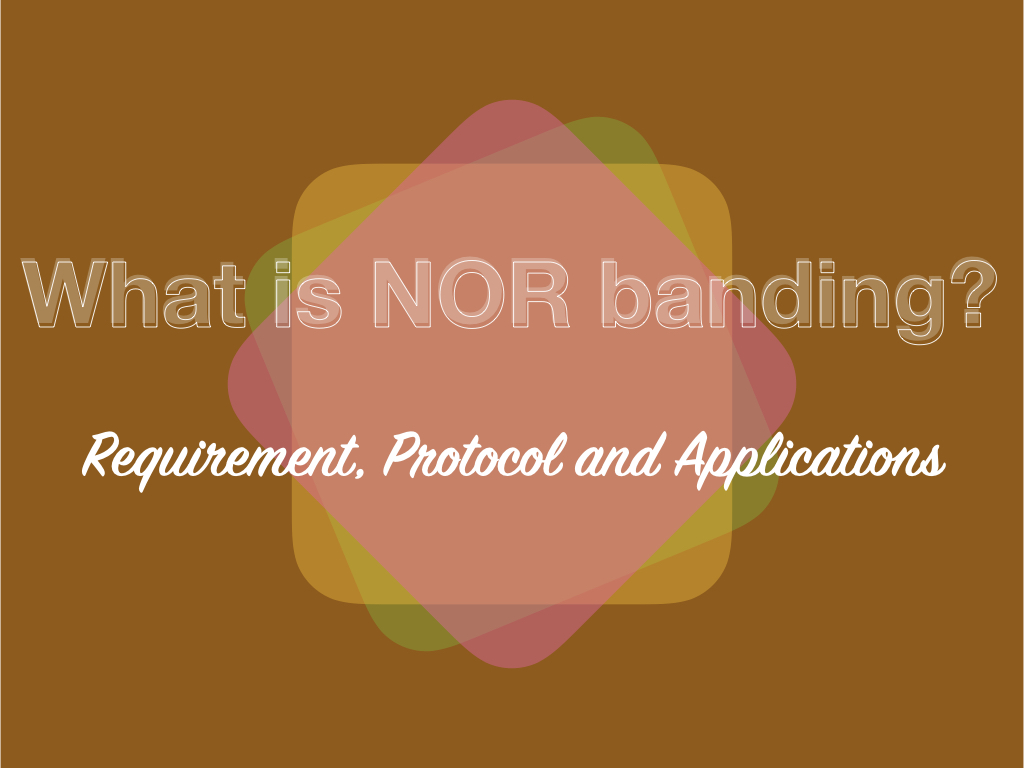 What is NOR Banding?- Requirement, Process, Protocol and Applications