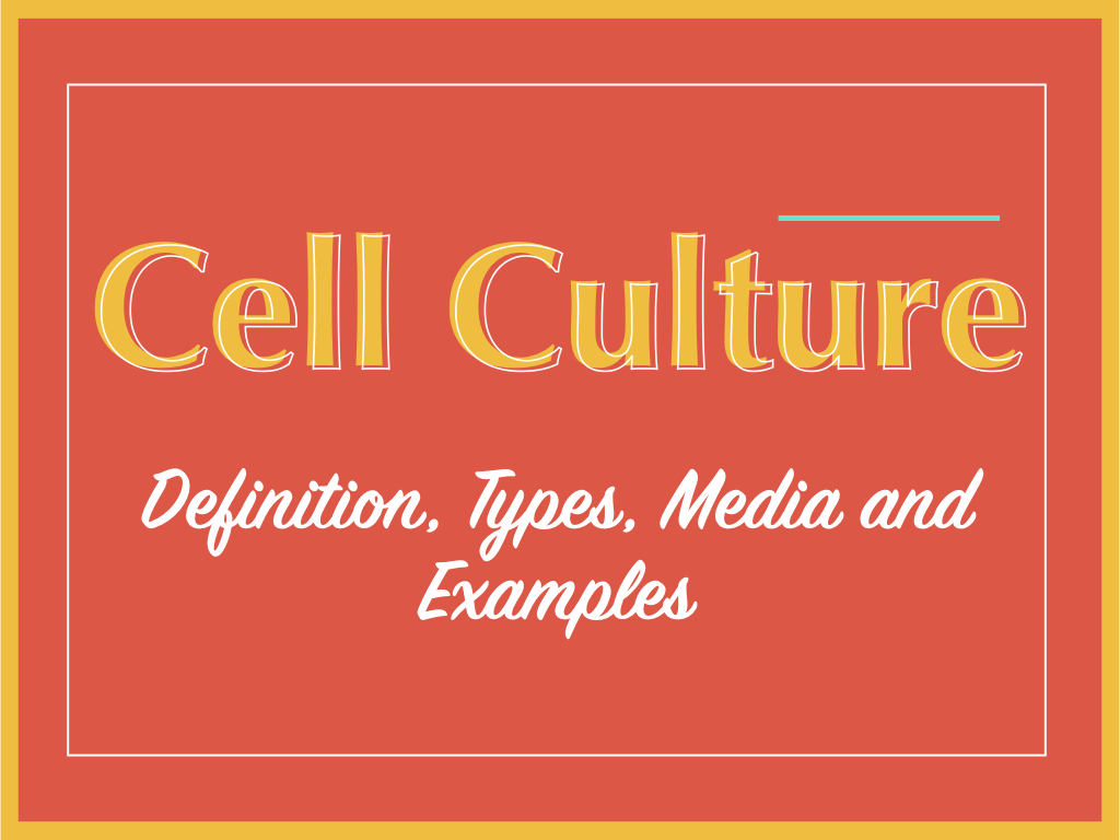 Cell culture: Definition, types, media and examples