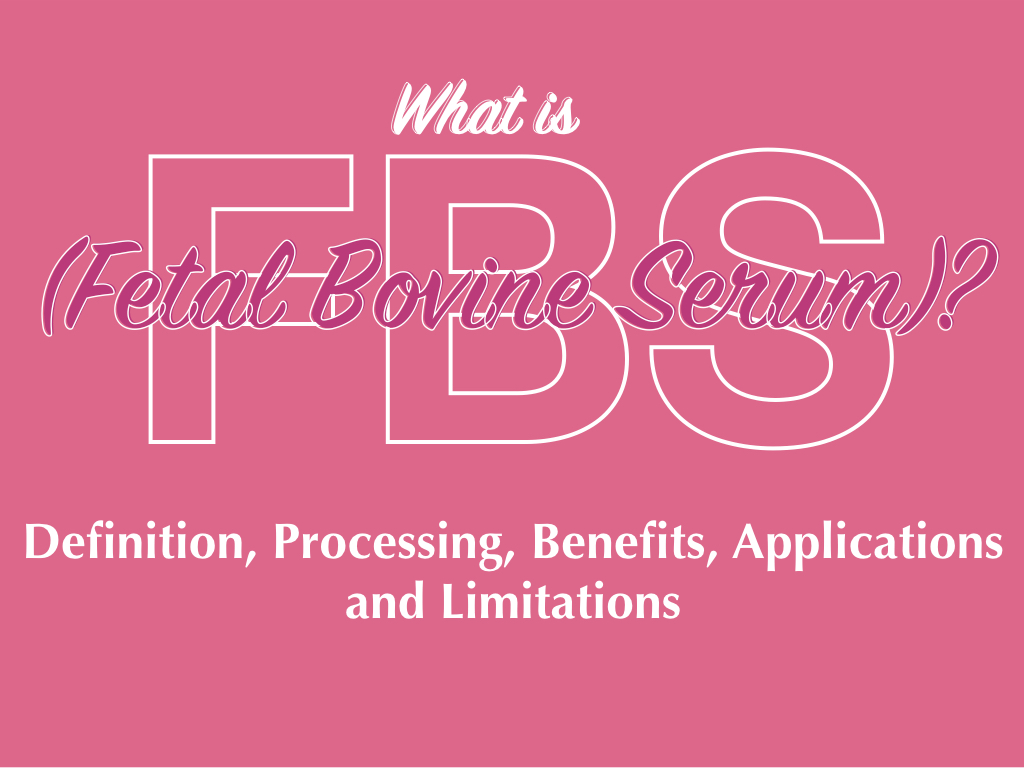 What is FBS (Fetal Bovine Serum)?- Definition, Processing, Benefits, Applications and Limitations