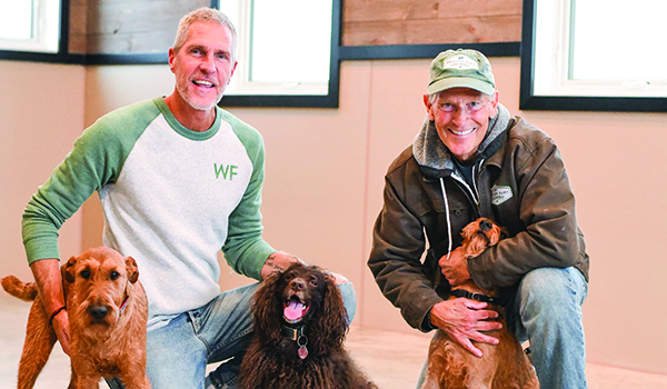 Welcott Farm offers dogs a retreat from everyday life