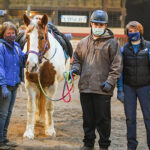 Watervliet equestrian center provides therapy, challenges, inspiration