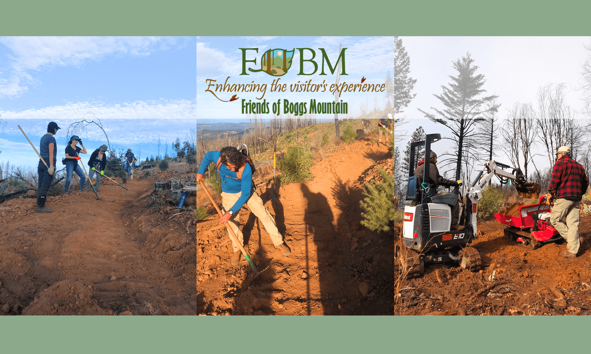 Friends of Boggs Mountain