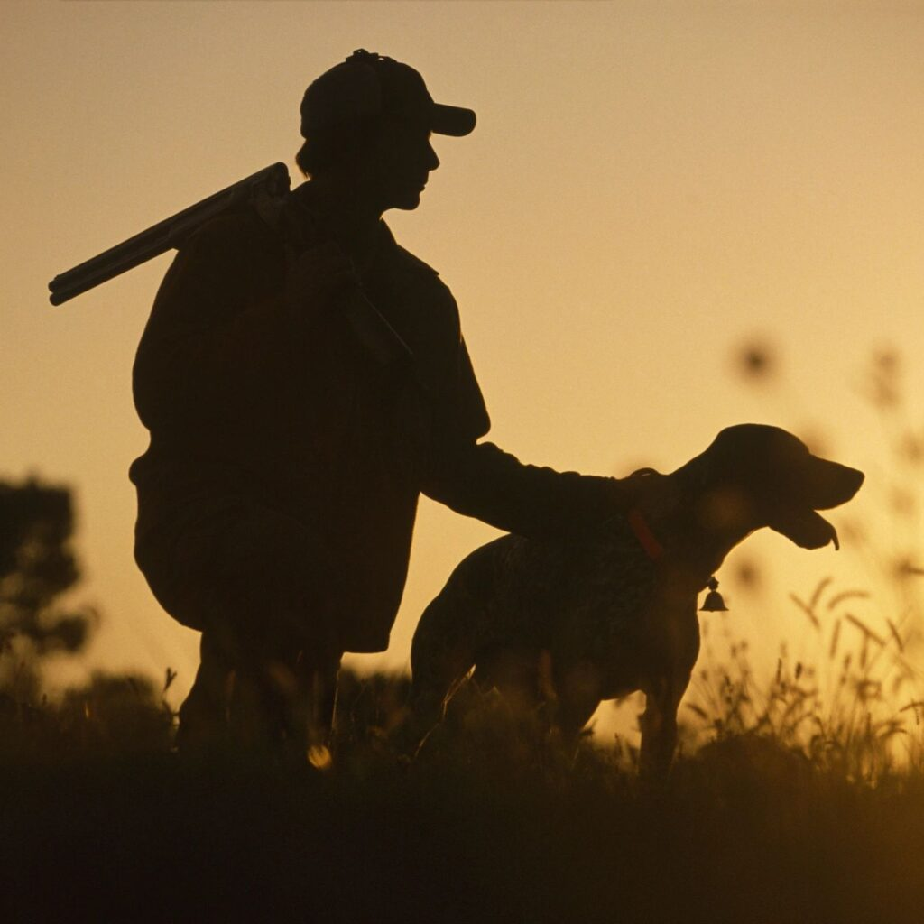 Silhouette image of hunter with rifle and dog