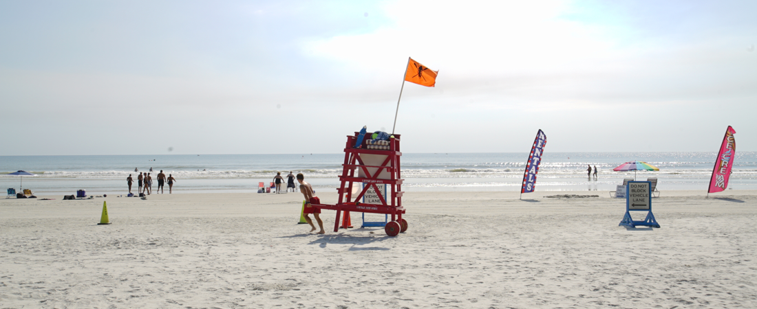 Beach_at_Flagler_Avenue_New Smyrna Beach