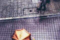 the urban reflex