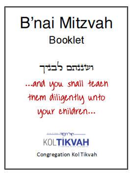bat mitzvah guide