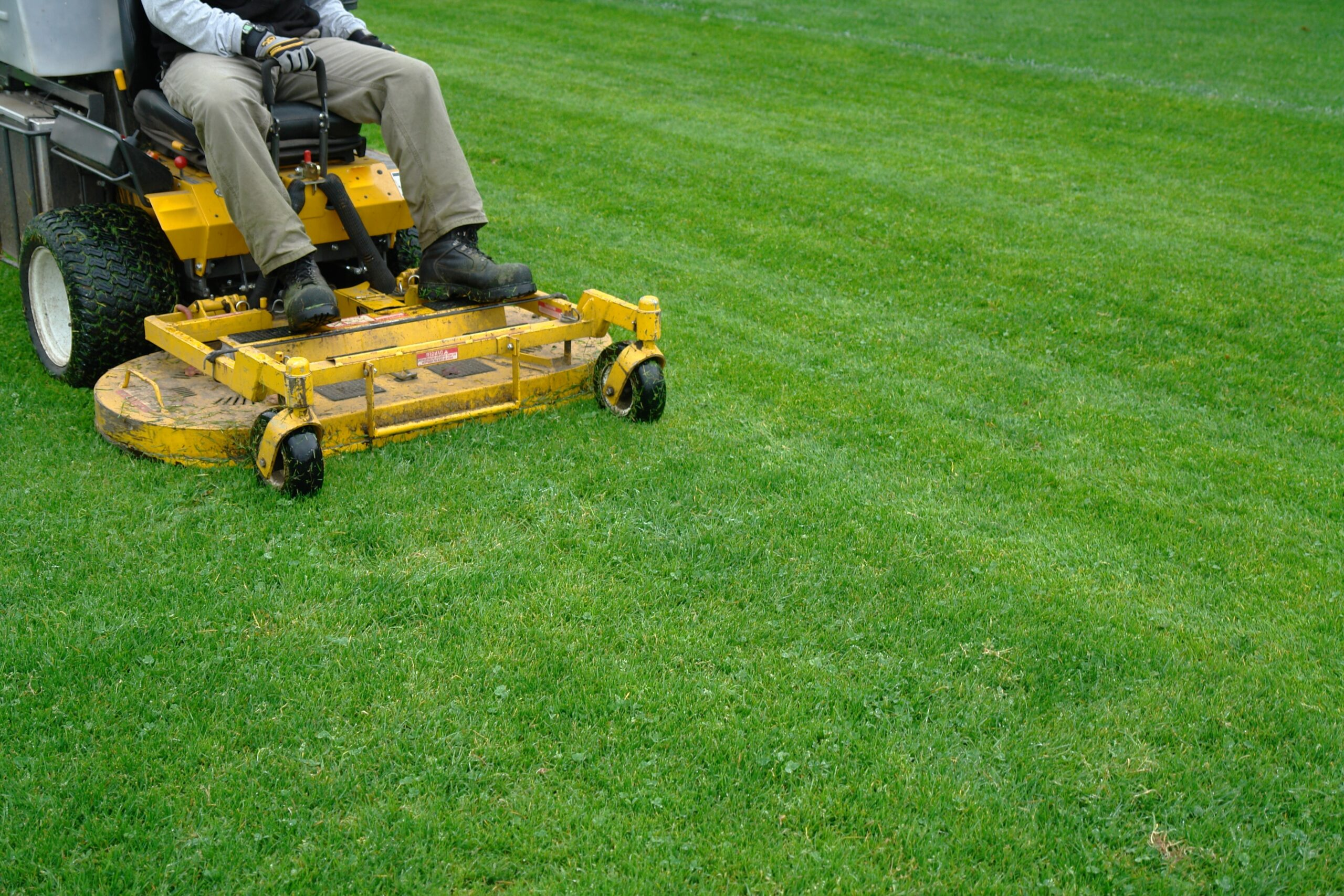 cypress-mowing