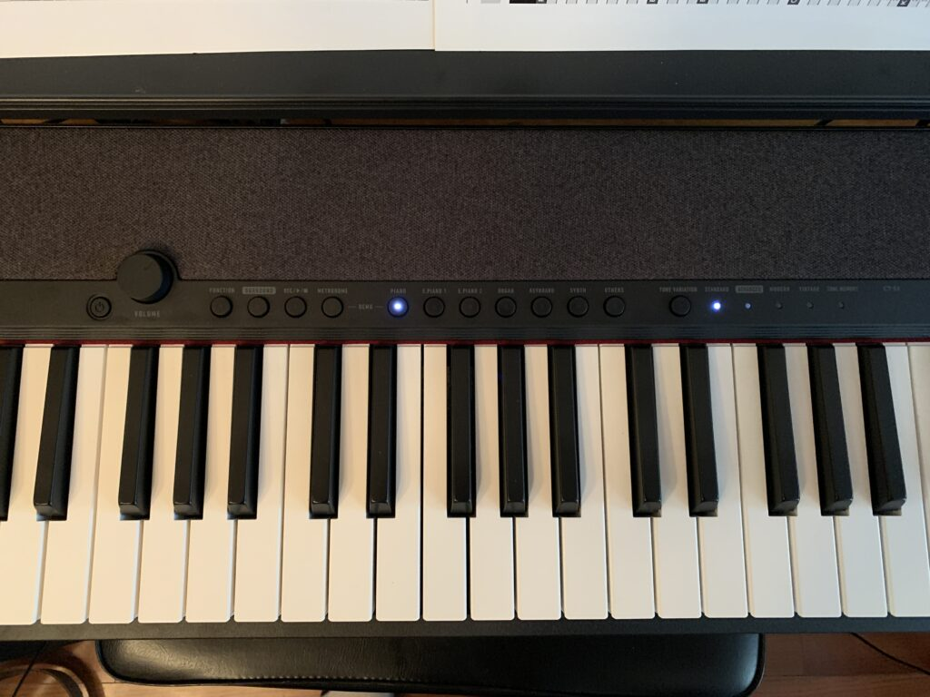 Casiotone CTS-1 Buttons