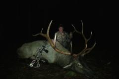 elk-hunting-12