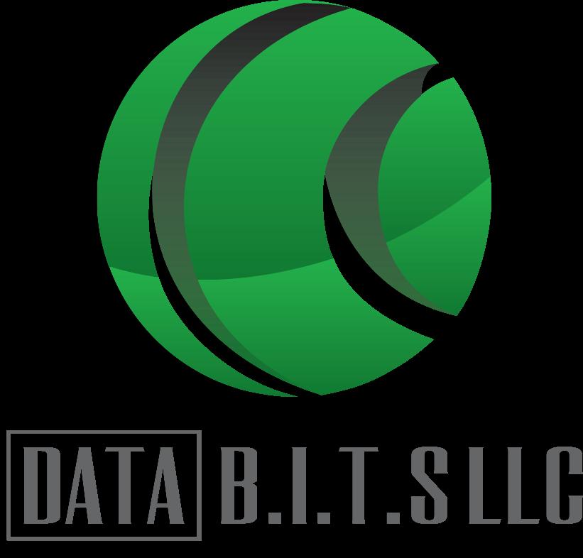 Data B.I.T.S., LLC