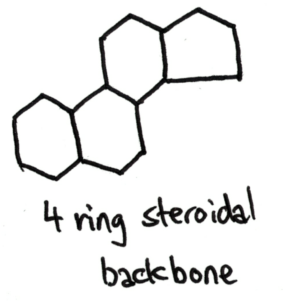 4 ring steroidal backbone