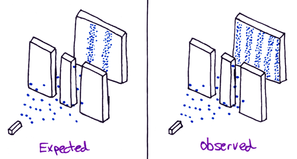 expected vs observed