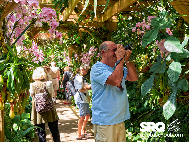 marie selby botanical gardens photographic workshops