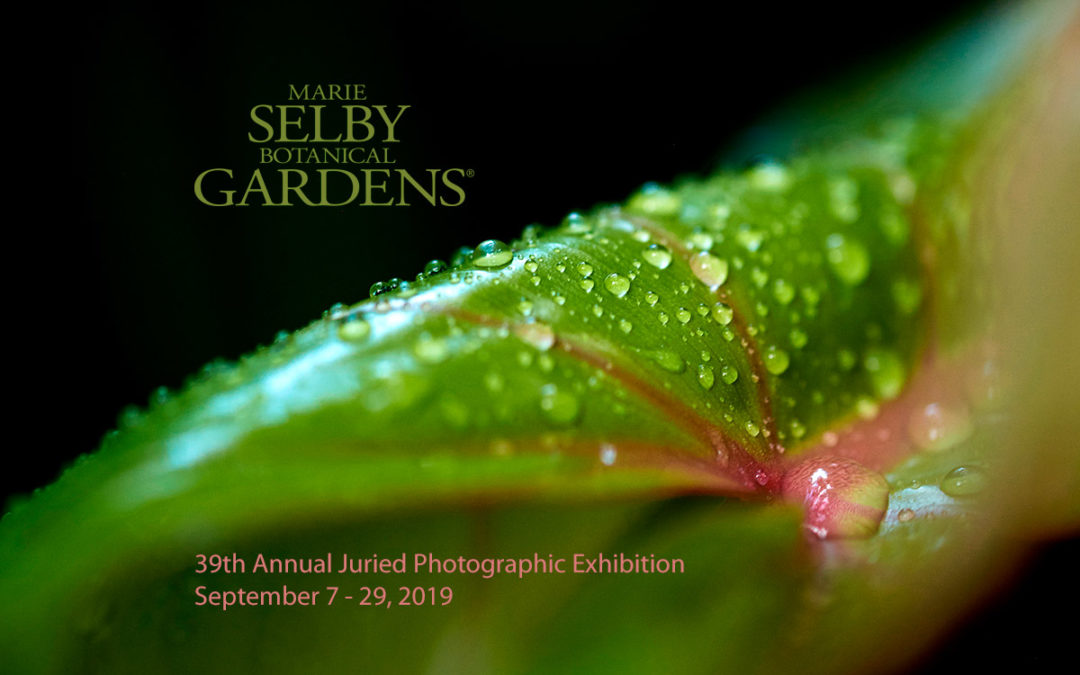 Selby Gardens 39th Annual Juried Photographic Exhibition