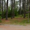 Site-45