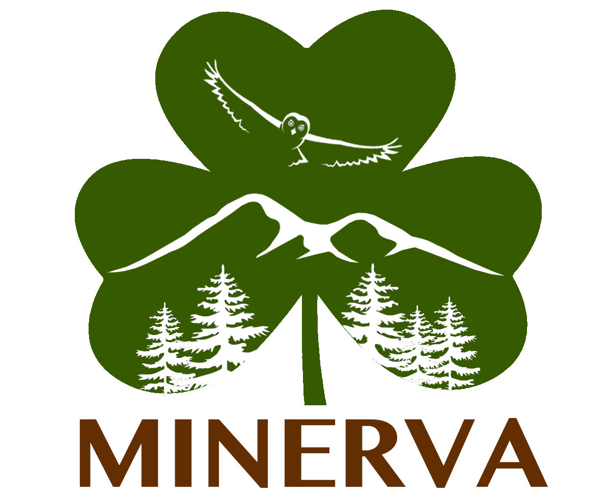Minerva New York