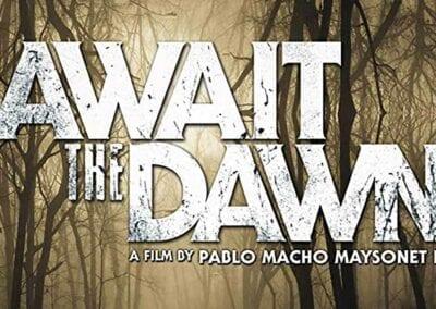 Await the Dawn