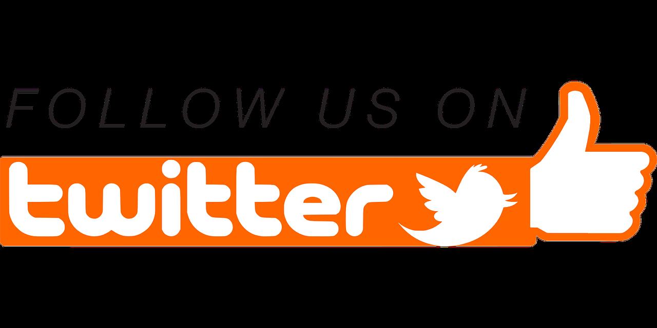 follow, twitter, social networking