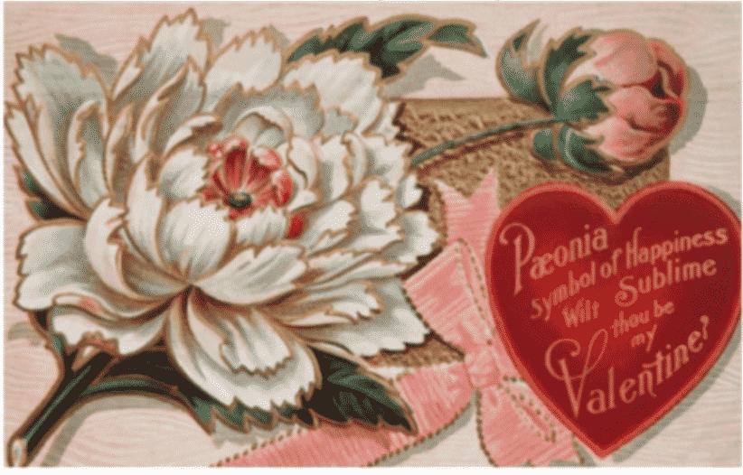 Valentine's & Galentine's Gifts
