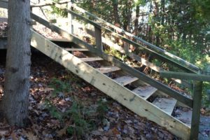 Wooden-steps-part-of-walk-to-lakeCrop