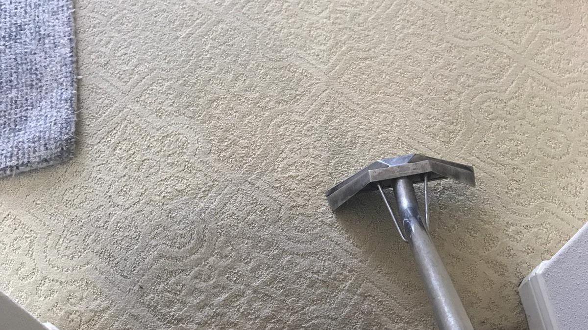 carpet cleaning in newport coast ca