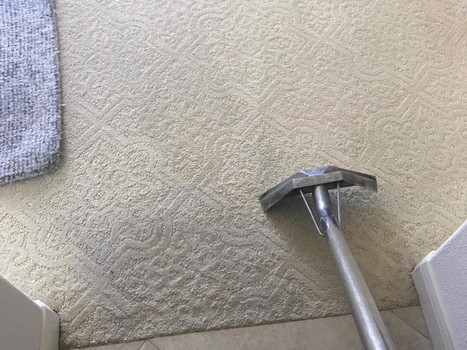 carpet cleaning in newport coast ca