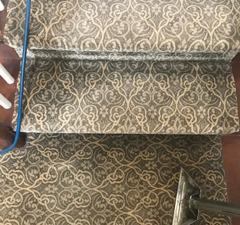 carpet cleaners near me