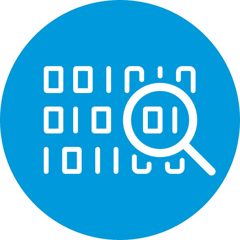 data intergrity icon (circle)
