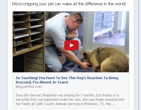Micro-chipping your pet can make all the difference in the world!