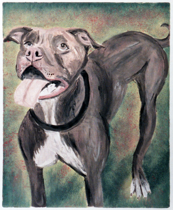 Pit bull portrait in monotype