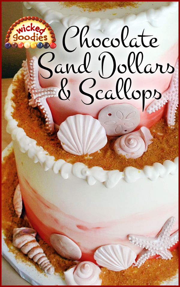 Modeling Chocolate Sand Dollars and Scallop Shells