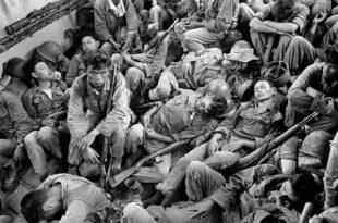 Sino Vietnamese War