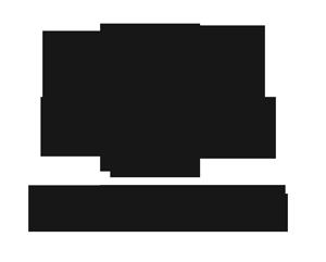 DSA logo