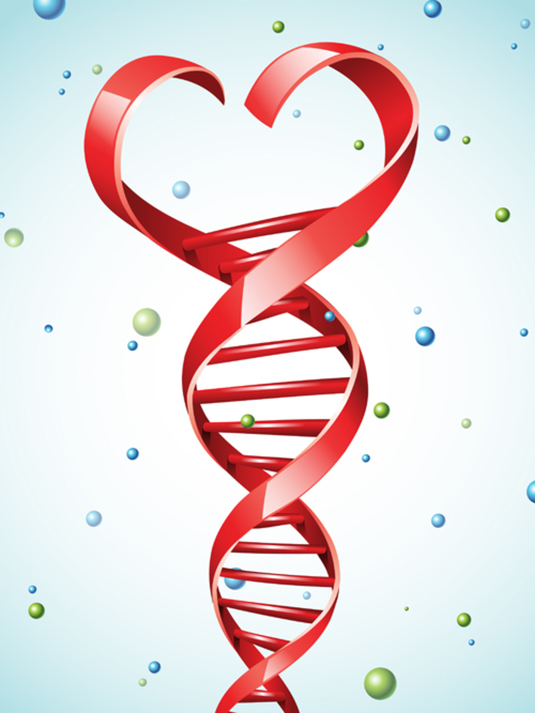 DNA strand in a shape of a heart