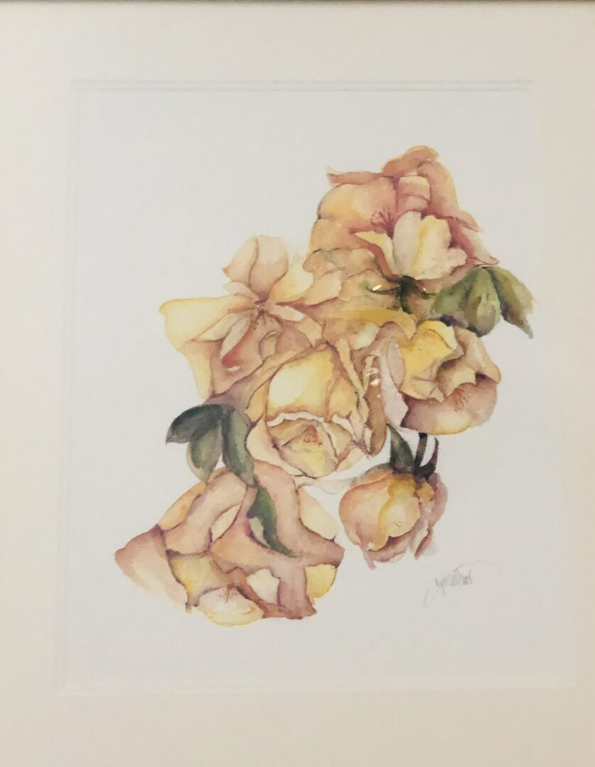 18x22 yellow roses