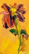 10x141_2 yellow daisy