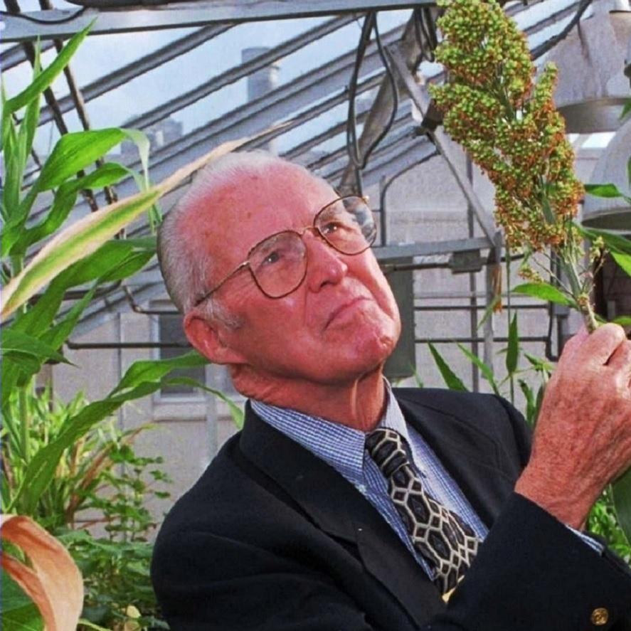 14 Borlaug