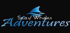 Sea of Whales Logo