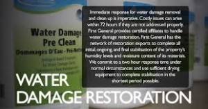 water_damage_experts_ct