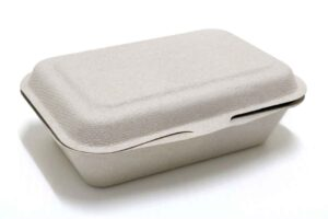 Paper takeaway food container on white background.